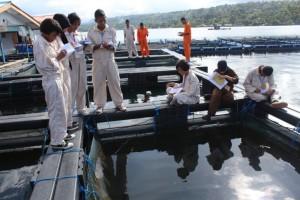 Kunjungan ke Balai Budidaya Laut (BBL) Ambon