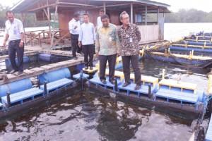 Kunjungan Kepala Pusat Pendidikan KP ke Instalasi Keramba Jaring Apung