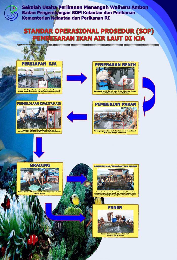 Standar Operasinal Prosedur Pembesaran Ikan Air Laut di KJA